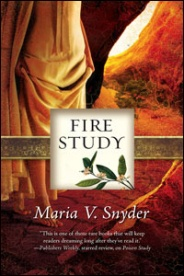 US Fire Study Cover Art